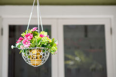 Hanging basket of flowers Royalty Free Stock Images