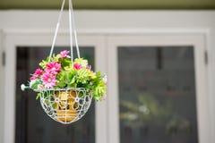 Hanging basket of flowers. Hanging basket of beautiful flowers Royalty Free Stock Images