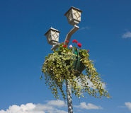 Hanging basket full of flowers. Stock Photo