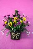 Hanging basket full of spring pansies Royalty Free Stock Photos