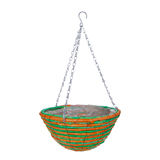 Hanging basket plant isolated Stock Photography