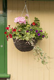 Hanging Basket Stock Photography