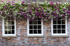 Hanging Baskets in a Countryside Town Royalty Free Stock Image