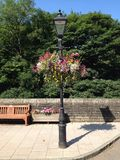 Hanging baskets on lamp post Stock Photo