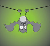 Hanging Bat. A grey cartoon bat hanging off a wire with green and black background giving spooky sensation Royalty Free Stock Images
