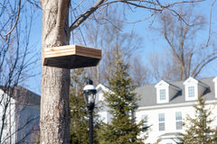 Hanging bird feeder stock photos