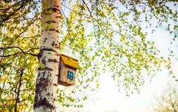 Hanging bird house box Stock Photos