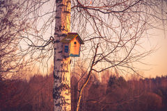 Hanging birdhouse Royalty Free Stock Photography