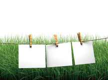 Hanging blank paper on clothesline in field Royalty Free Stock Photography