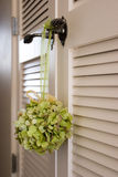 Hanging Bouquet. Hanging green bouquet on a white close door Stock Photography