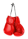 Hanging boxing gloves. Isolated on white background royalty free stock images