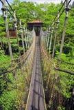 Hanging Bridge Stock Image