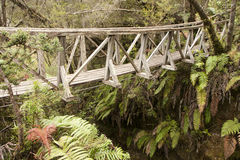 Hanging bridge. Over an abyss Stock Images