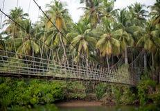 Hanging bridge Royalty Free Stock Image
