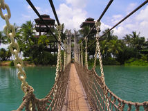 Hanging bridge Royalty Free Stock Photo