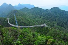 Hanging bridge above the rain forest Stock Image