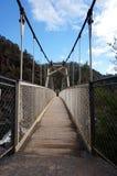 Hanging bridge at the Cataract Gorge Reserve, Launceston Royalty Free Stock Photo