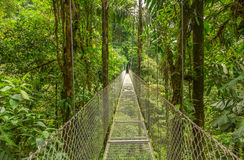 Hanging bridge in Costa Rica Stock Photo