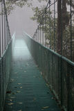 Hanging bridge in fog Royalty Free Stock Image