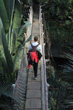 Hanging bridge and a hiker stock image
