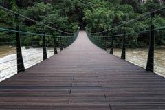 The hanging bridge royalty free stock photos
