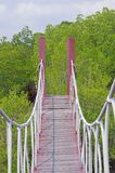 Hanging bridge in the mangrove forest Stock Photo