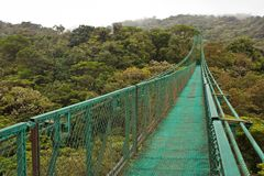 Hanging bridge in Monteverde reserve in Costarica. Touristic destination number one in Central America, tourictic attraction above tropical rainforest royalty free stock image