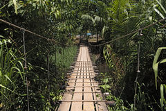 Hanging bridge over a river at Drake in Costa Rica Stock Photo