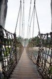Hanging bridge in Sentosa stock image