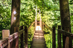Hanging bridge. On Sheltowee Trace trail in Red River Gorge in Kentucky Stock Photo