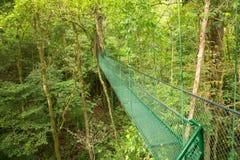 Hanging bridge Royalty Free Stock Images
