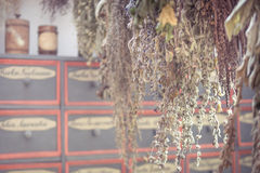 Hanging bunches of dried herbs in vintage style Stock Photos