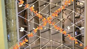 Hanging Butterflies, moving in formation, as if they are alive stock footage