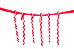 hanging candy cane Stock Photography