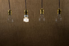 Hanging CFL and Incandescent Bulbs Stock Photo