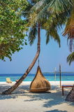 Hanging chair under the palm tree on a beach at Maldives resort. Hanging chair under palm tree on a beach at Maldives resort Stock Image