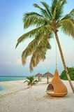 Hanging chair under palm tree on a beach at Maldives resort. Hanging chair under a palm tree on a beach at Maldives resort Stock Images