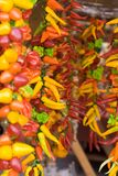 Hanging chillies in market. Colorful hanging chillies in a marker place stock photography