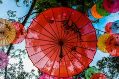 Chinese unbrella decorating. Hanging chinese umbrella use for ornamental in the garden Stock Photos