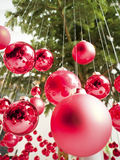 Hanging christmas baubles Stock Image