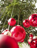 Hanging christmas baubles Royalty Free Stock Images