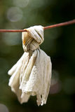 Hanging Cloth. Cloth hanging from a rusted wire Stock Photography