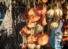 Hanging dried fruit and vegetable, vibrant colors Royalty Free Stock Photos