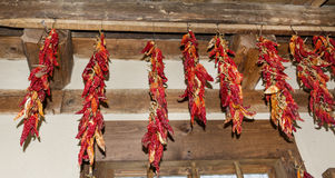 Hanging dried red peppers Royalty Free Stock Photos