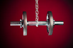 Hanging dumbell Royalty Free Stock Image