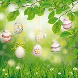 Hanging Easter Eggs Beech Twigs Flowers Royalty Free Stock Images