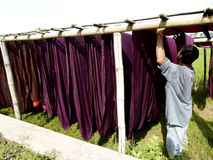 Hanging fabric. Worker was hanging fabric on a field in Sukoharjo, Central Java, Indonesia royalty free stock image