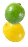 Hanging, falling, flying lime and lemon  fruits isolated on white  with clipping path Royalty Free Stock Image