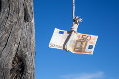 Hanging fifty Euro Royalty Free Stock Photo