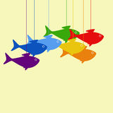 Hanging fish Royalty Free Stock Photos
